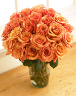 Two Dozen Orange Bliss Roses