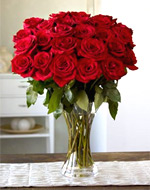 Discount Red Roses