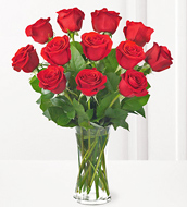 Dozen Red Roses