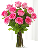 One Dozen Pink Roses