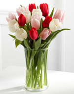 Red, White and Pink Tulips