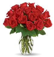 Enduring Passion 18 Roses Vase