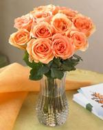 One Dozen Peach Roses
