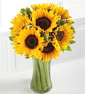 Endless Summer Sunflower Vase